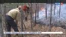 Новости на Россия 24 Лесные пожары наступают в Бурятии при тушении огня погибли два человека
