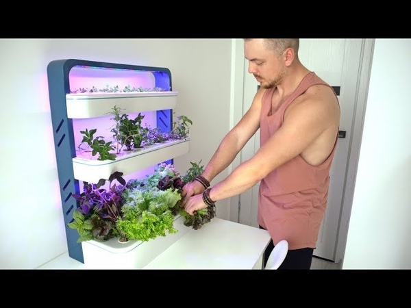Future Indoor Garden - Top 8 Indoor garden technology | hydroponic system | dont have to buy✅