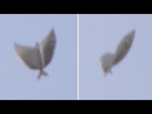 What Did This Man Witness Flying In The Sky Above Philadelphia...?