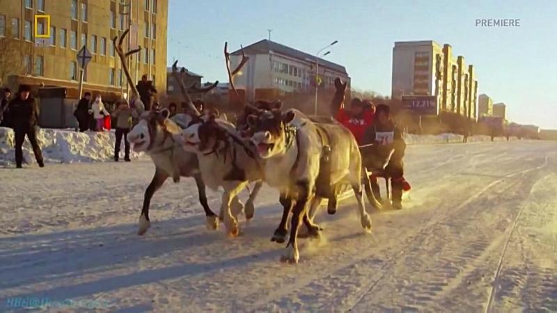 Винни Джонс: Реально о России - Железнодорожники (Котлас - Воркута) воркута котлас железнодорожники оленьибега