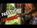 НАКОНЕЦ ТО ЭТО СДЕЛАЛИ Нетипичная Жизнь Коста Рика Кошка помошница собака работяга
