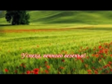 Супер поздравления с днем рождения! Красивая музыка, цветы и пожелания!.mp4