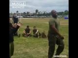 Боец MMA против морских котиков