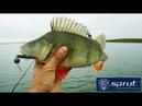 Отличная резина по окуню Силиконовая приманка SPRUT HORI Окунь джиг Kamfish
