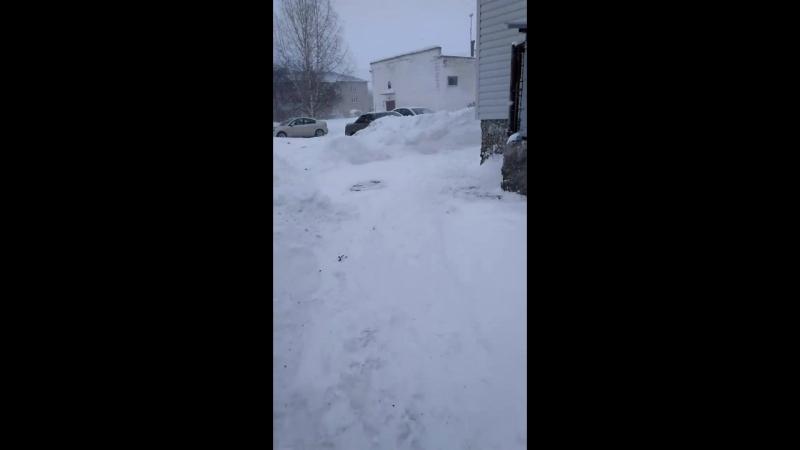 Зима ㅠㅠ
