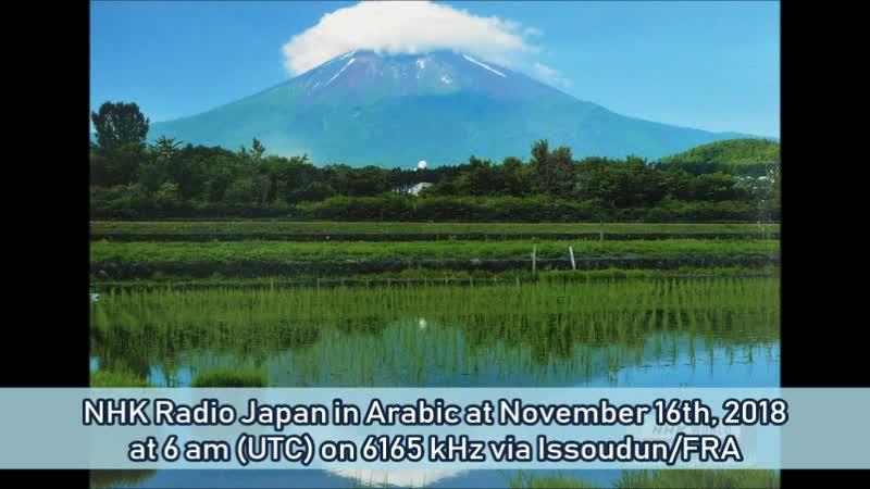 NHK Radio Japan in Arabisch am 16.11.2018 um 6 Uhr (UTC) auf 6165 KHz via Issoudun/FRA