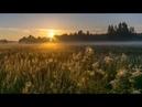 Пение жаворонка на рассвете Встречайте восход солнца под звонкое пение жаворонка