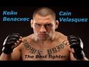 Лучший боец мира Кейн Веласкес Highlights Kane Velasquez