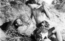 Видео к фильму «Робинзон Крузо» (1954): Трейлер