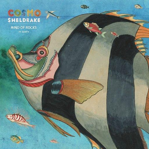 Cosmo Sheldrake альбом Mind of Rocks
