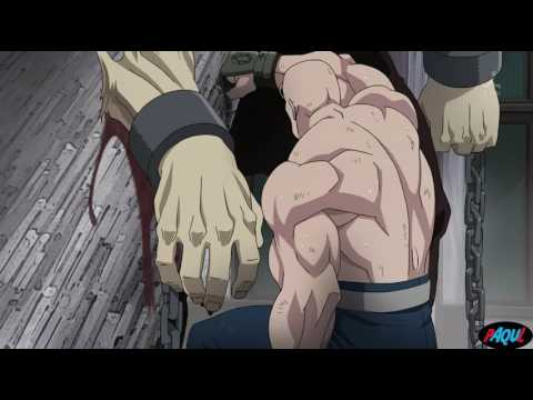 |AMV| Fullmetal Alchemist: Brotherhood - Guano Apes: Open Your Eyes
