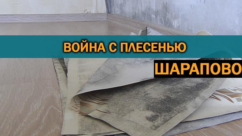 Коммунальщики из Чеховского р-на довели молодую мать до слез