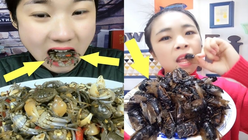 EATING SHOW COMPILATION-CHINESE FOOD-MUKBANG-Greasy Chinese Food-Beauty eat strange food-NO.31