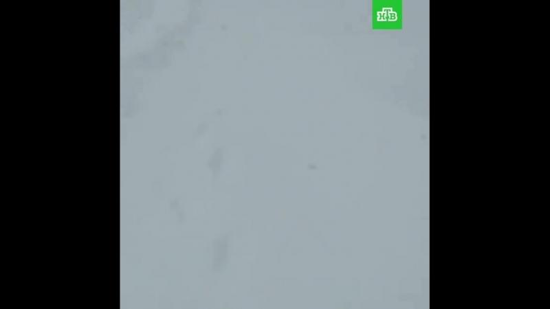 Ребята, это хана!» на Сахалине разбушевался циклон. Из-за нулевой видимости почти не работает транспорт