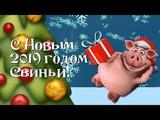 Поздравление с Новым 2019 годом Свиньи