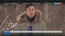 Новости на Россия 24 • Физрук и 10 школьников потерялись в тайге под Томском