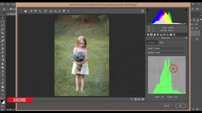 Photoshop cc Tutorial_ Outdoor Child Portrait COLOR CORRECTION