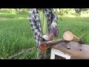 Деревянные столбы в землю, чтобы не гнили. Все тонкости
