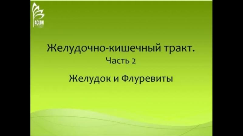 Желудочно-кишечный тракт, ч. 2. Желудок и флуревиты