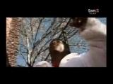 Superfunk feat Ron Carroll - Lucky Star
