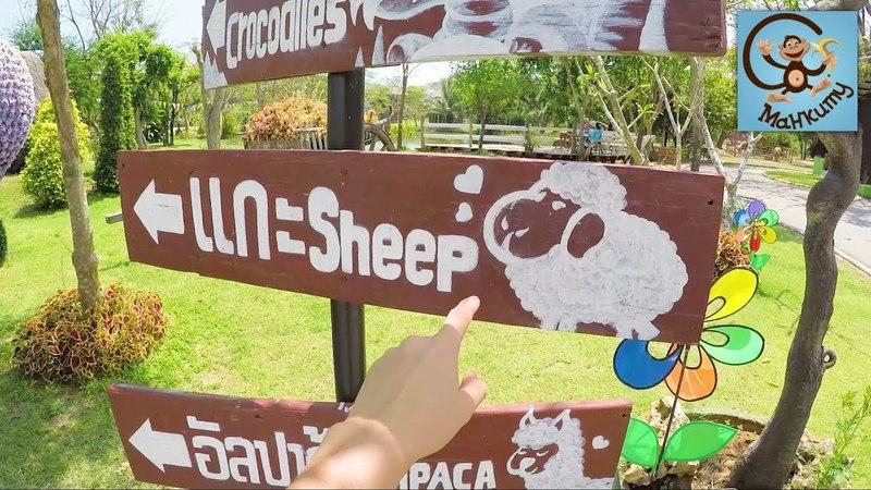 Зоопарк миньоны крокодилы старая машина и футболка Minecraft МанкиТайм в Таиланде