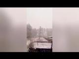 Снегопад вызвал заторы и аварии в Алтайском крае