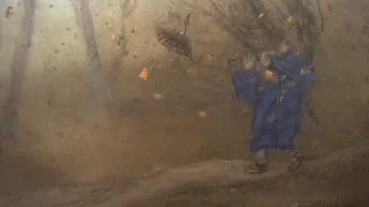 Зимние дни, 2003 Кихатиро Кавамото, Юрий Норштейн, Александр Петров.