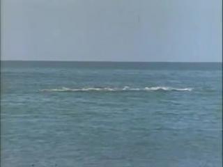 1972 Голоса дельфинов - Подводная одиссея команды Кусто