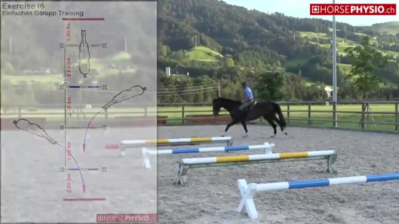 Exercise i6 Galopp training mit Cavaletti