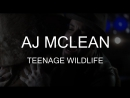 AJ McLean – Teenage Wildlife