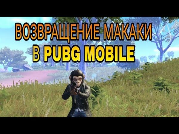 Возвращение МАКАКИ в PUBG Mobile. Монтажик по PUBG MOBILE