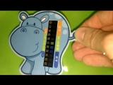 Видеообзор.Как использовать термометры-наклейки для измерения температуры воды💦