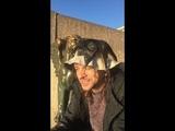 Ливан Соболев (ПЭХ') - Шут Знает! (стихотворение)