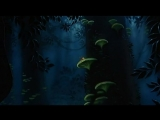 Долина папоротников Последний тропический лес (1992) FernGully The Last Rainforest