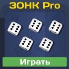 ЗОНК Pro