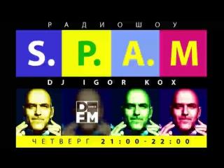 NEWYEAR DANCE PARTY - DJ KOX - S.P.A.M.