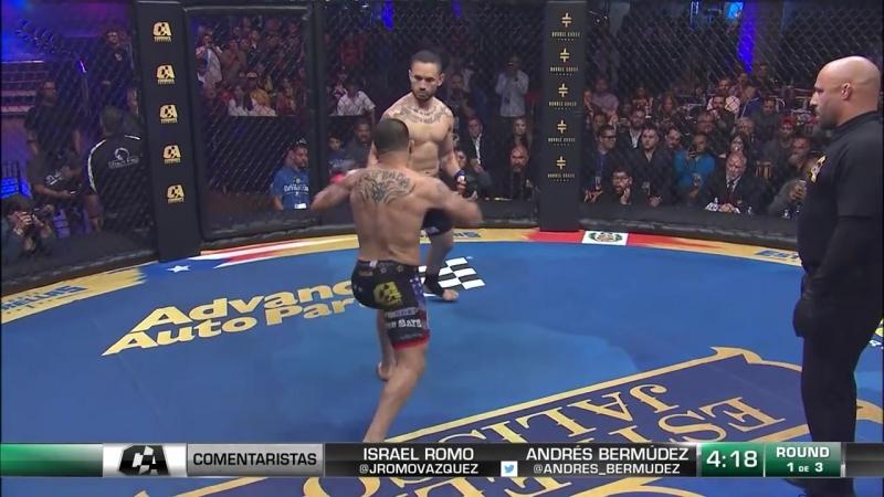 Один из лучших боёв этого года в MMA