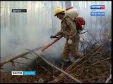 Пожароопасный сезон начался в 24 лесничествах Иркутской области
