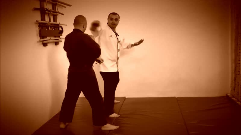Rebel Hapkido Series 합기도 By Vidadi Hajiyev (48)