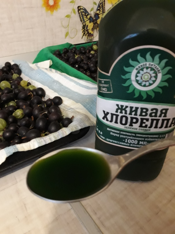 Ольга Якушкина   Челябинск