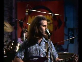 Country Joe McDonald - It`s Finally Over 1974