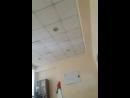 Жанерке Бекболат - Live