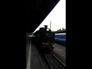 Прибытие рэтро поезда на Витебский вокзал.