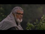 ТЕОРИЯ ТИГРА (2016) - трагикомедия, мелодрама, приключения. Радек Байгар