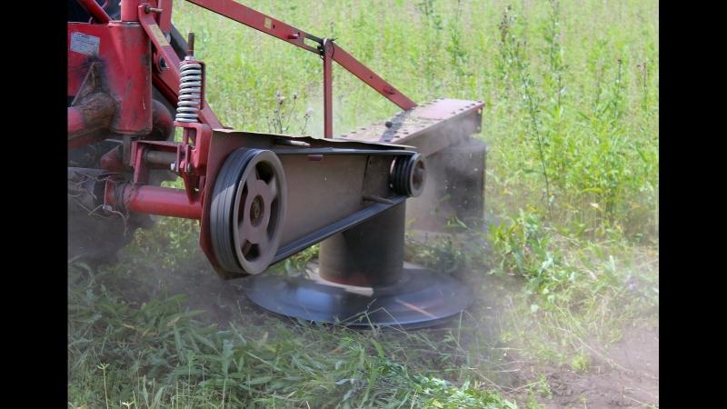 В Иркутской области полицейские совместно с представителями муниципалитетов уничтожают поля с дикорастущей коноплёй