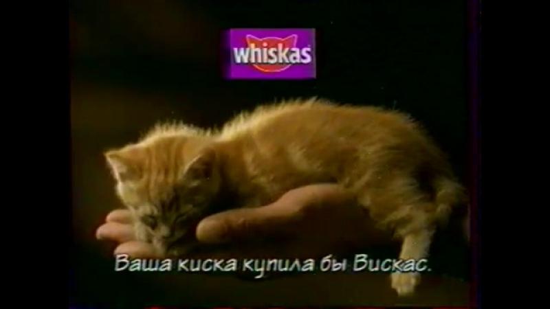 (staroetv.su) Реклама и заставка (ОРТ, 03.01.1999) Whiskas, Lenor