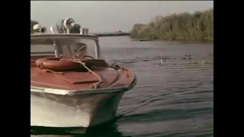 «Голубой патруль» (1974) - детский, детектив, реж. Тимур Золоев