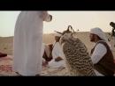 Знакомство с традициями бедуинов в Аль-Мармум