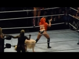 Bayley_Sasha Banks_Summer Rae vs Eva Marie_Dana Brooke_Natalya at WWE Live(1)