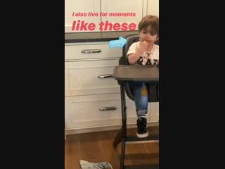 Зеппелин кушает (из истории Дэннил на Инстаграме)